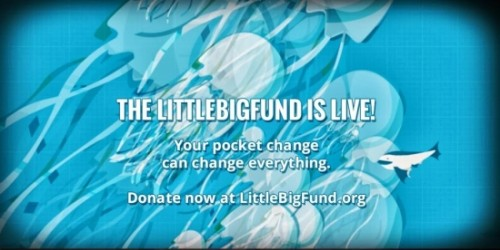 THE LITTLEBIGFUND LAUNCHES, MAKING A BIG IMPACT TO LITTLE CHARITIES nonprofit